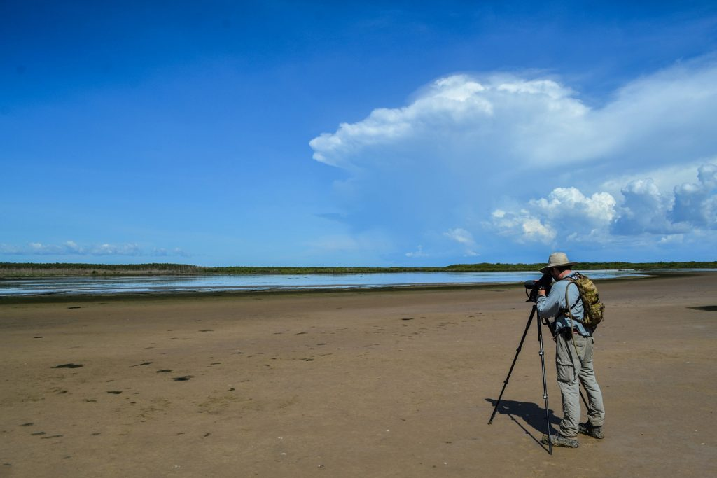 Ecologist conducting shorebird counts